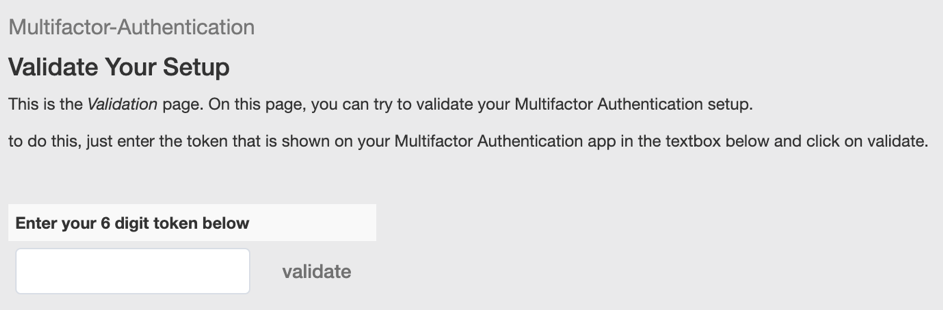 screenshot of token validation page